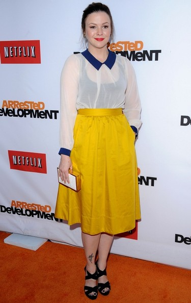 Amber Tamblyn Knee Length Skirt