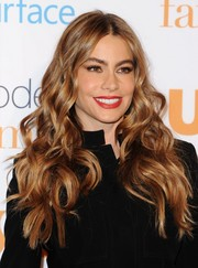 Sofia Vergara looked gorgeous with her flowing curls during the 'Modern Family' fan appreciation day.