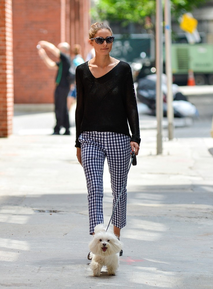 Olivia Palermo takes her dog for a walk in Brooklyn Park in New York City on June 12, 2013.