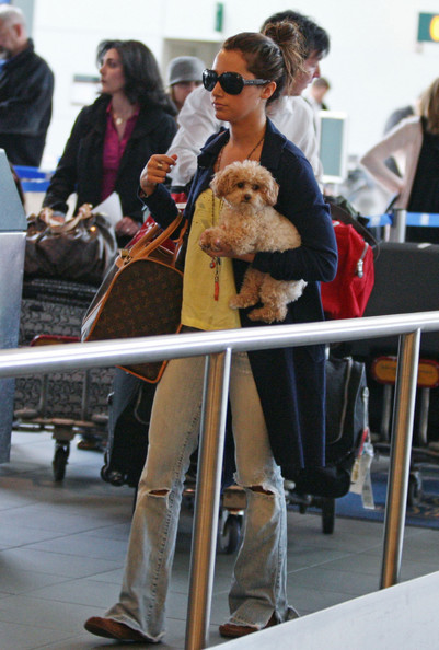 More Pics of Ashley Tisdale Dog Carrier Duffle (2 of 6) - Ashley Tisdale Lookbook - StyleBistro