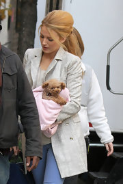 Blake Lively cozied up to her puppy on the 'Gossip Girl' set in a luxe tweed pea coat.