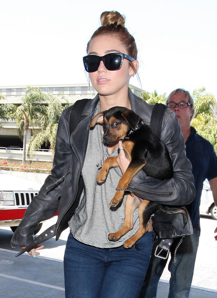 Miley Cyrus Wayfarer Sunglasses