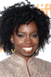 Adepero Oduye wore her hair in voluminous curls at the TIFF premiere of '12 Years a Slave.'