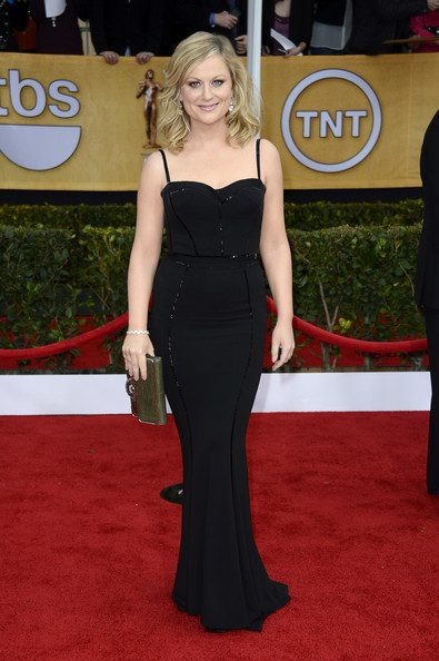 Amy Poehler Wore a Zuhair Murad Gown at the 2013 SAG Awards