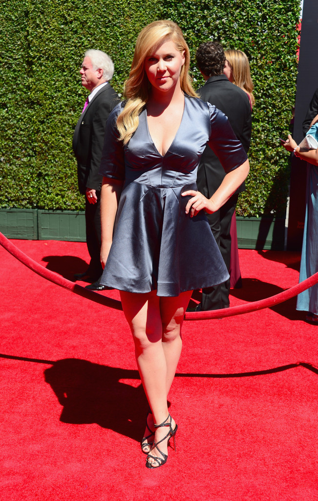 More Pics Of Amy Schumer Mini Dress 1 Of 2 Amy Schumer
