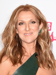 Celine Dion styled her hair into a center-parted wavy 'do for the 2015 Billboard Music Awards.