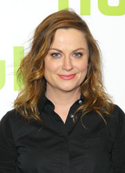 Amy Poehler wore lovely shoulder-length curls to the 2016 Hulu Upfront.