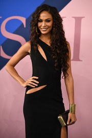 Joan Smalls attended the 2017 CFDA Fashion Awards carrying a black snakeskin clutch with gold hardware.