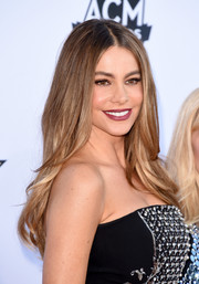 Sofia Vergara stuck to her trademark center-parted layers when she attended the Academy of Country Music Awards.