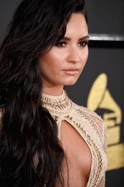Demi Lovato sported a glossy nude lip at the 2017 Grammys.