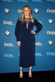Amy Schumer donned a sheer-panel navy dress by La Perla for the 2018 Directors Guild of America Awards.
