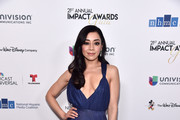 Aimee Garcia Evening Dress