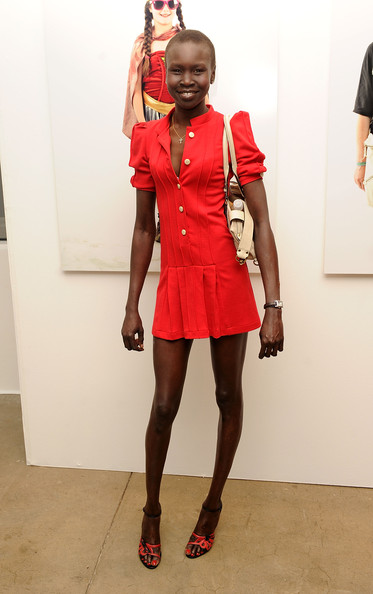 Alek Wek Shirtdress