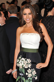 Sofia Vergara turned up the spice factor with long center part curls at the 2011 Met Gala.