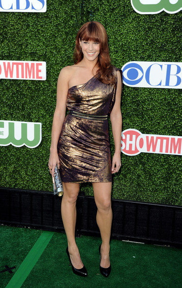 Amanda Righetti One Shoulder Dress
