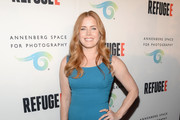 Amy Adams Form-Fitting Dress