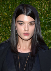 Crystal Renn opted for a loose straight 'do when she attended the Tribeca Film Festival Artists Dinner.