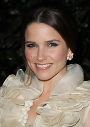 Sophia bush highlighted her rosy cheeks with metallic silver shadow that was subtly swept across her upper lids.