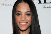 Bianca Lawson Long Straight Cut