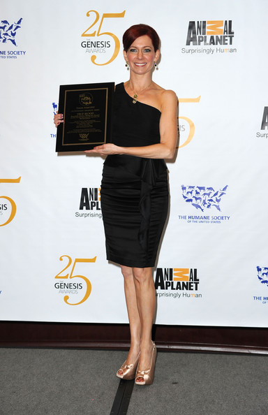 Carrie Preston Little Black Dress