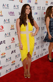 Roselyn Sanchez rocked a bright yellow and nude dress at the A&E Upfront event in NYC.