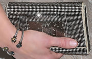Chelsea Handler chose a beaded clutch for her super shiny and glamorous look on the red carpet.