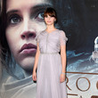 Look of the Day: December 16th, Felicity Jones