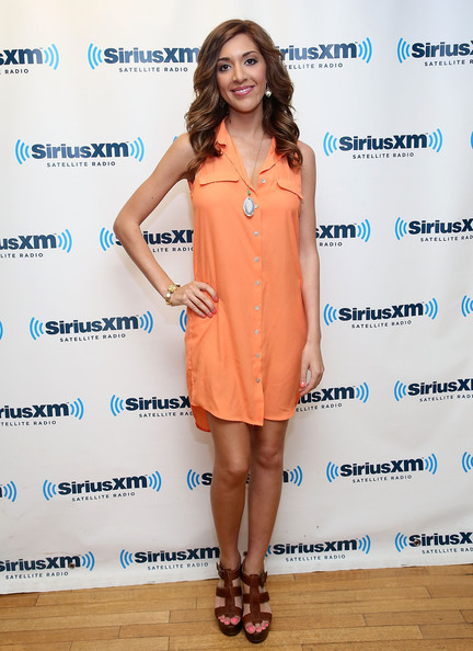 Farrah Abraham Shirtdress