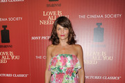 Helena Christensen Print Dress