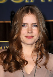 Amy Adams wore a sweep of shiny, moisturizing lipgloss at the Hollywood Foreign Press Association's Cecil B. Demille Award announcement.