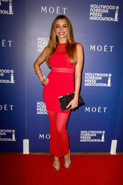 Sofia Vergara put her fabulous curves on display in a body-con red mesh-panel dress by My Revolving Closet during the Hollywood Foreign Press Association's Grants Banquet.