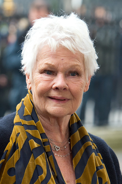 Judi Dench Messy Cut [face,people,lady,wrinkle,skin,yellow,human,grandparent,smile,photography,richard attenborough,judi dench,westminster abbey,england,london,memorial service]