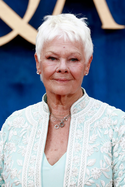 Judi Dench Pixie [face,lady,head,wrinkle,grandparent,smile,red carpet arrivals,judi dench,uk,england,london,odeon leicester square,victoria abdul,victoria abdul uk,premiere,premiere]