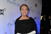 Julie Andrews Full Sleeve Gloves