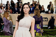 Laura Prepon Princess Gown