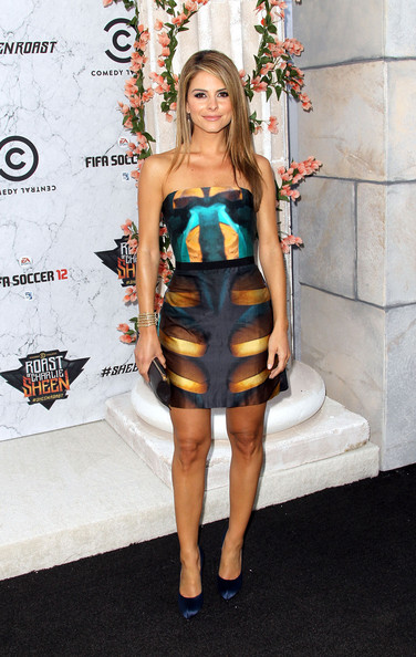 Maria Menounos Print Dress
