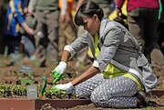 Michelle Obama got down and dirty at the White House Kitchen Garden in a pair of gray and white print pants.