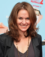 Amy Brenneman styled her hair in a high-volume 'do with curly ends for the premiere of 'Cloudy with a Chance of Meatballs 2.'