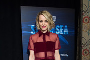 Rachel McAdams Sheer Top