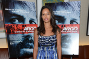 Rula Jebreal Day Dress
