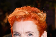 Sandy Powell Messy Cut