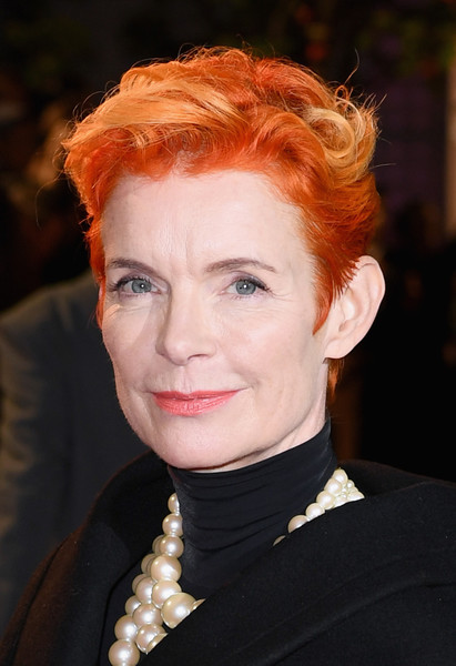Sandy Powell Messy Cut [the favourite uk premiere,the favourite,hair,face,hairstyle,eyebrow,red hair,head,chin,beauty,lip,forehead,sandy powell,american express gala,uk,london,england,bfi london film festival,premiere]