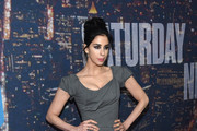 Sarah Silverman Evening Dress