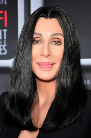 Cher sported a sleek face-framing center-parted 'do when she attended the AFI Night at the Movies.