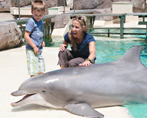 Celebs Hang Out at SeaWorld