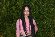 Zoe Kravitz Mini Skirt
