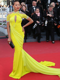 What wore the most extraordinary dress from Cannes?