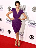 Who was the best dressed at the People's Choice Awards 2015?