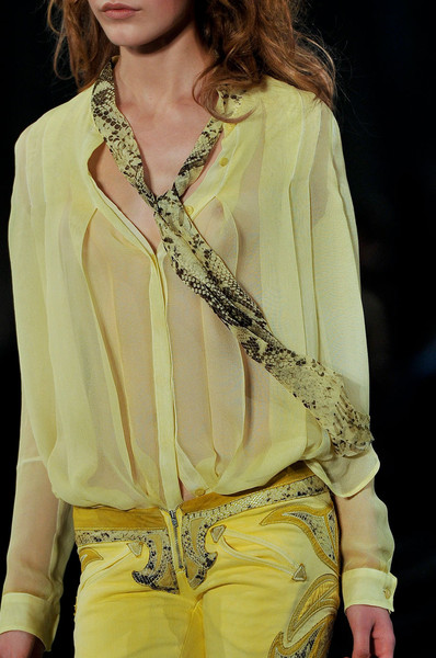 Just Cavalli at Milan Spring 2012 (Details)