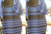 10 Dresses for Those Who See White and Gold